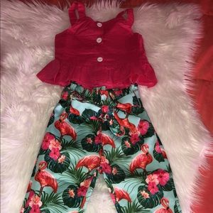 2pc flamingo outfit